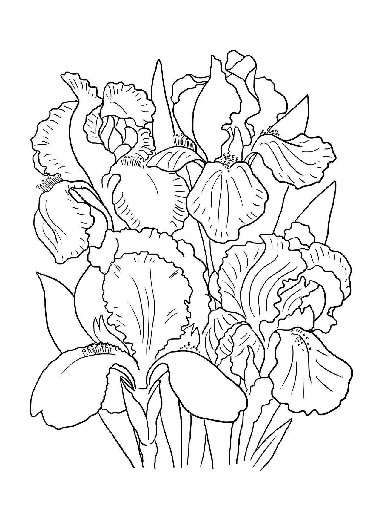 flower bouquet coloring page lily flower coloring pages at getcoloringscom free bouquet flower page coloring