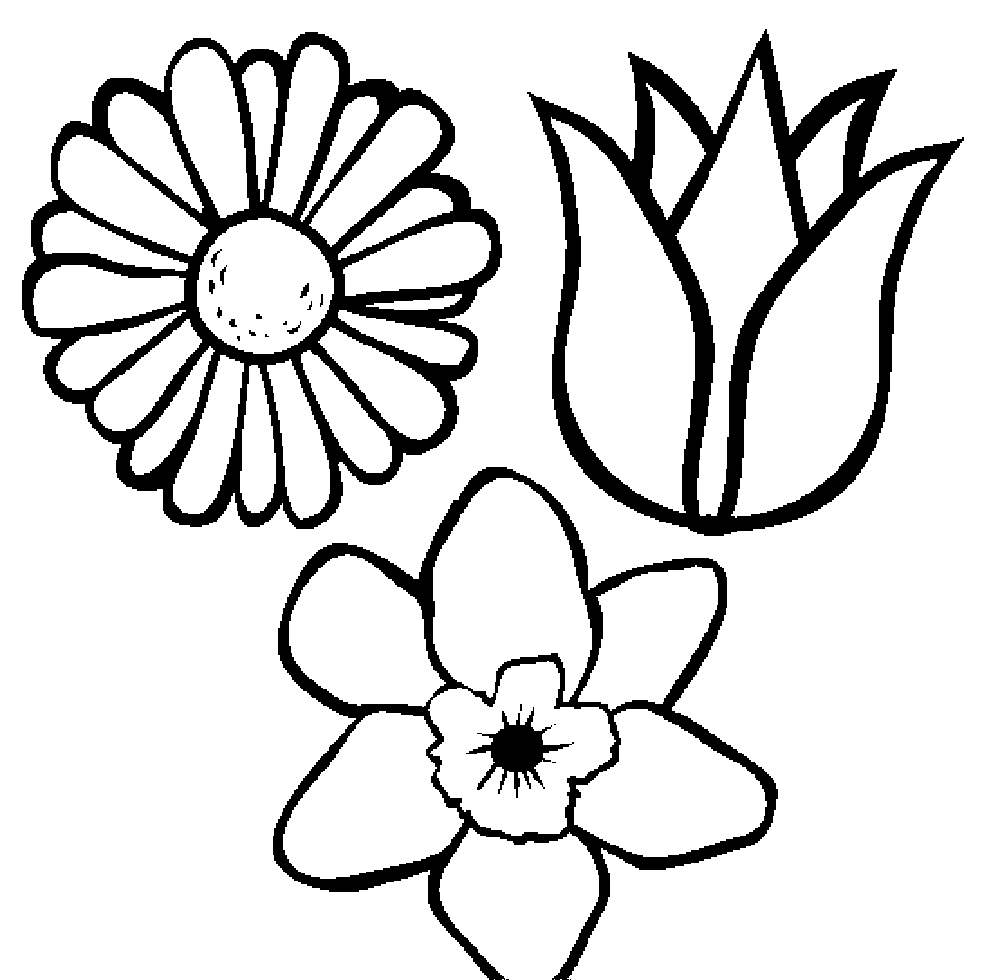 flower coloring pages for kids flowers coloring pages for kids printable free flower pages for coloring kids