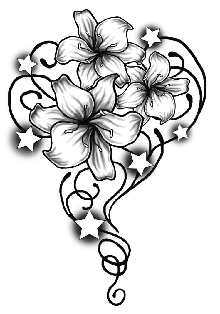 flower drawings how to draw a protea flower flower drawings