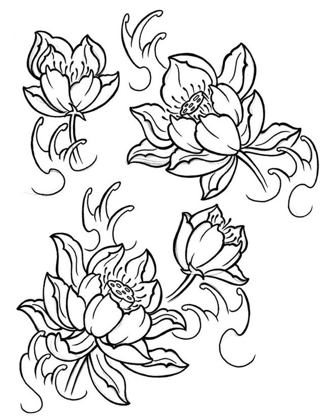 flower drawings how to draw any flower with pen ink ran art blog flower drawings