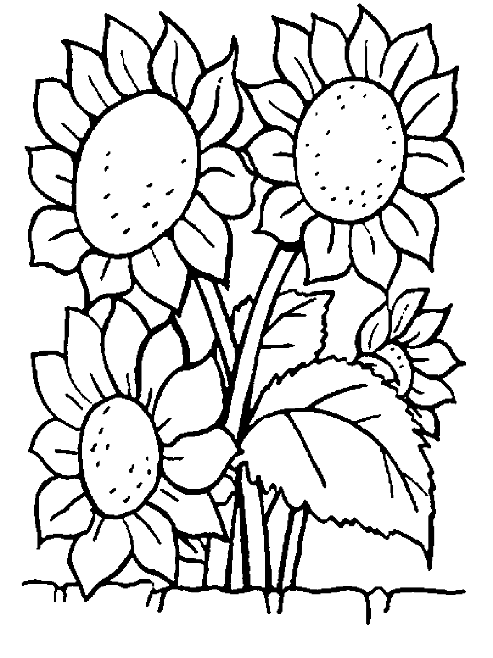flowers coloring page beautiful printable flowers coloring pages coloring flowers page