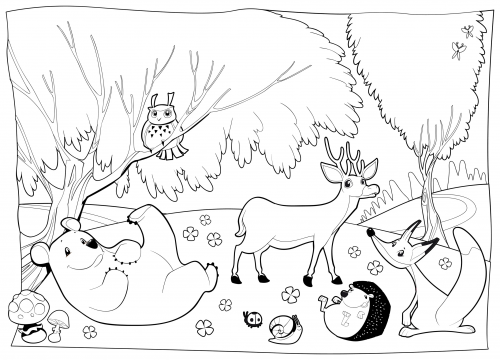 forest animal coloring pages detailed coloring page forest creatures forest animal coloring pages