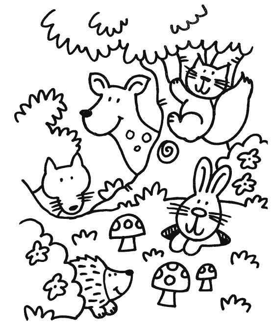 forest animal coloring pages forest animals coloring page squirrel with acorn forest coloring pages animal