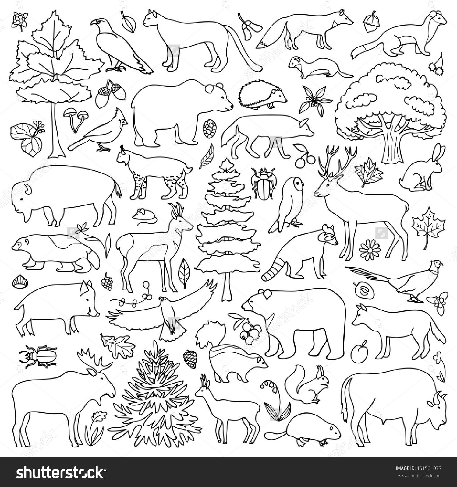 forest animal coloring pages forest coloring pages at getcoloringscom free printable animal coloring pages forest