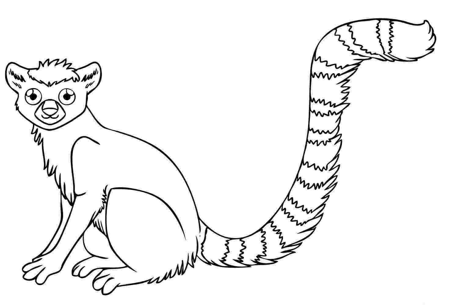 forest animal coloring pages rainforest coloring pages endangered species coloring pages coloring forest animal