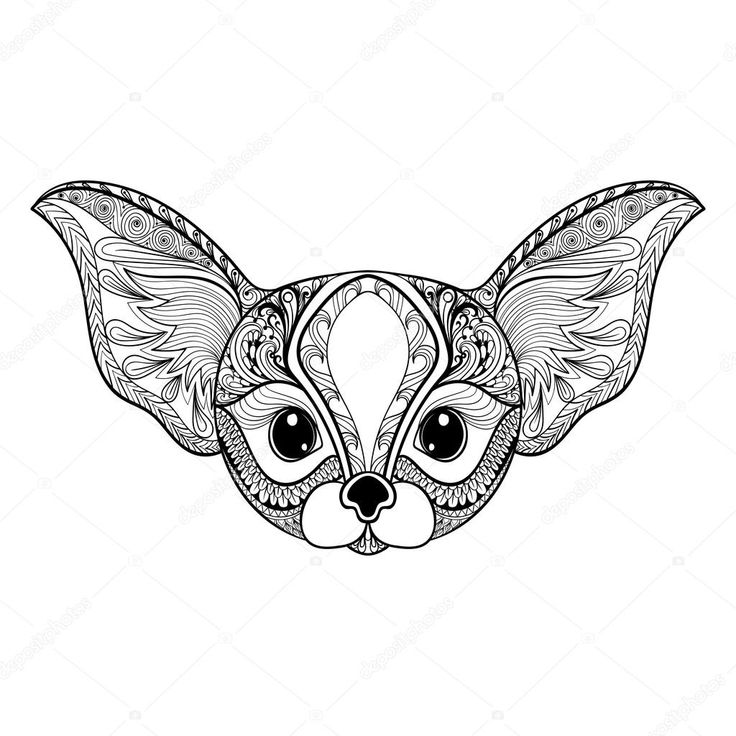 fox face coloring page cute baby fox drawing free download on clipartmag face fox page coloring