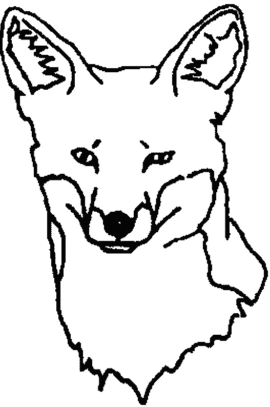 fox face coloring page fennec fox face coloring page free printable coloring pages fox face coloring page