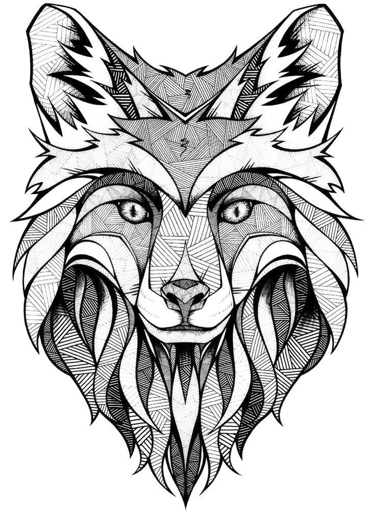 fox face coloring page red fox coloring page free printable coloring pages coloring face fox page