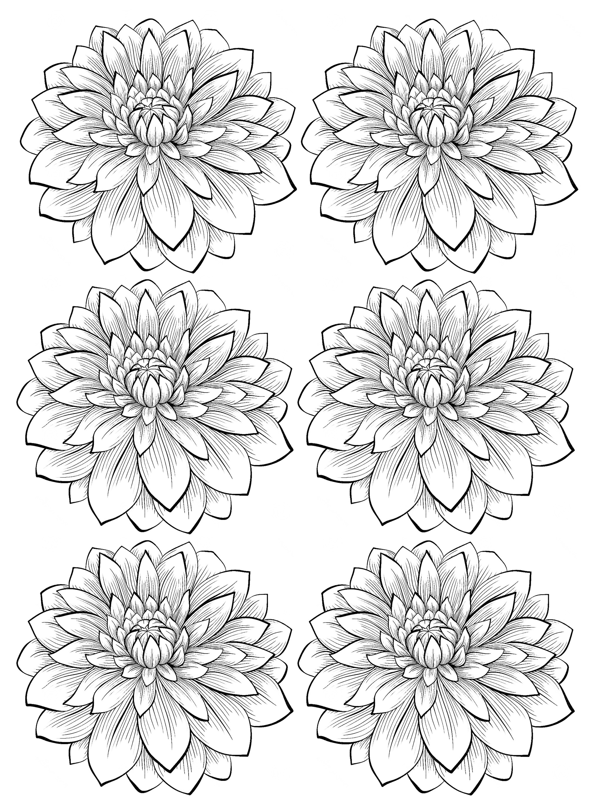 free flower coloring pages for adults get this detailed flower coloring pages for adults pages adults flower for coloring free