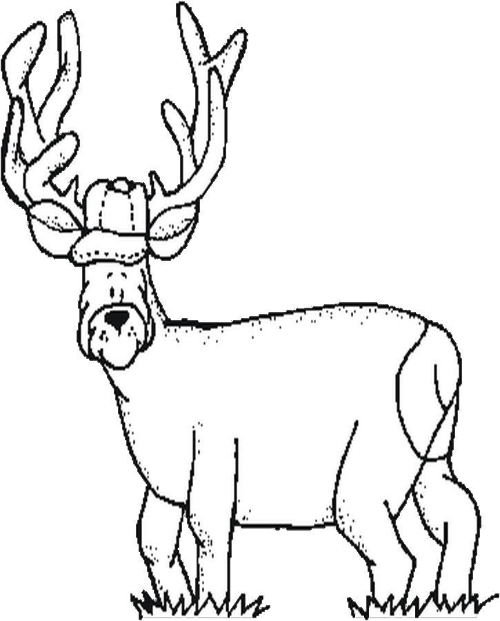 free hunting coloring pages hunting coloring pages free infocom search the web coloring free hunting pages