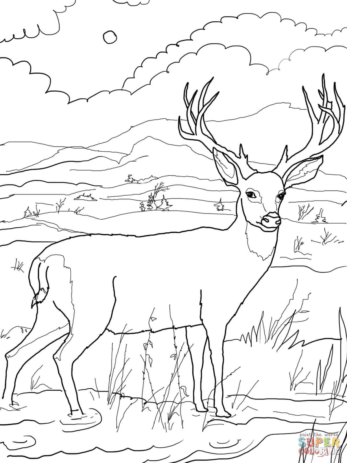 free hunting coloring pages printable hunting coloring pages for kids cool2bkids hunting coloring pages free