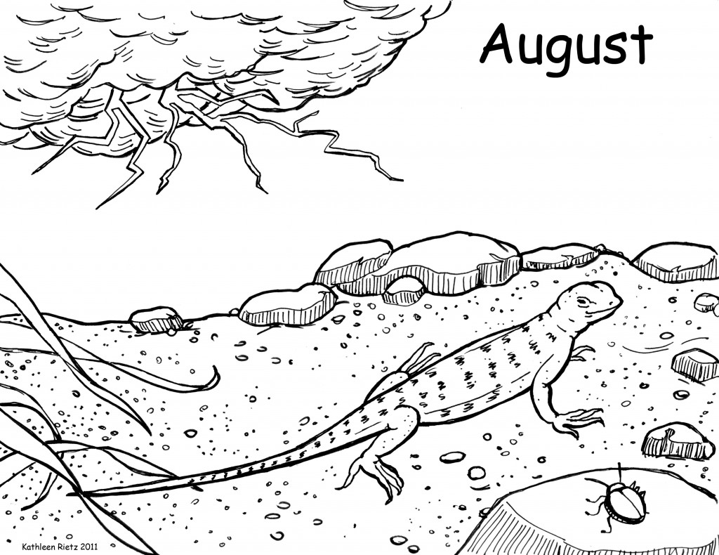 free lizard coloring pages free lizard coloring pages lizard coloring pages free