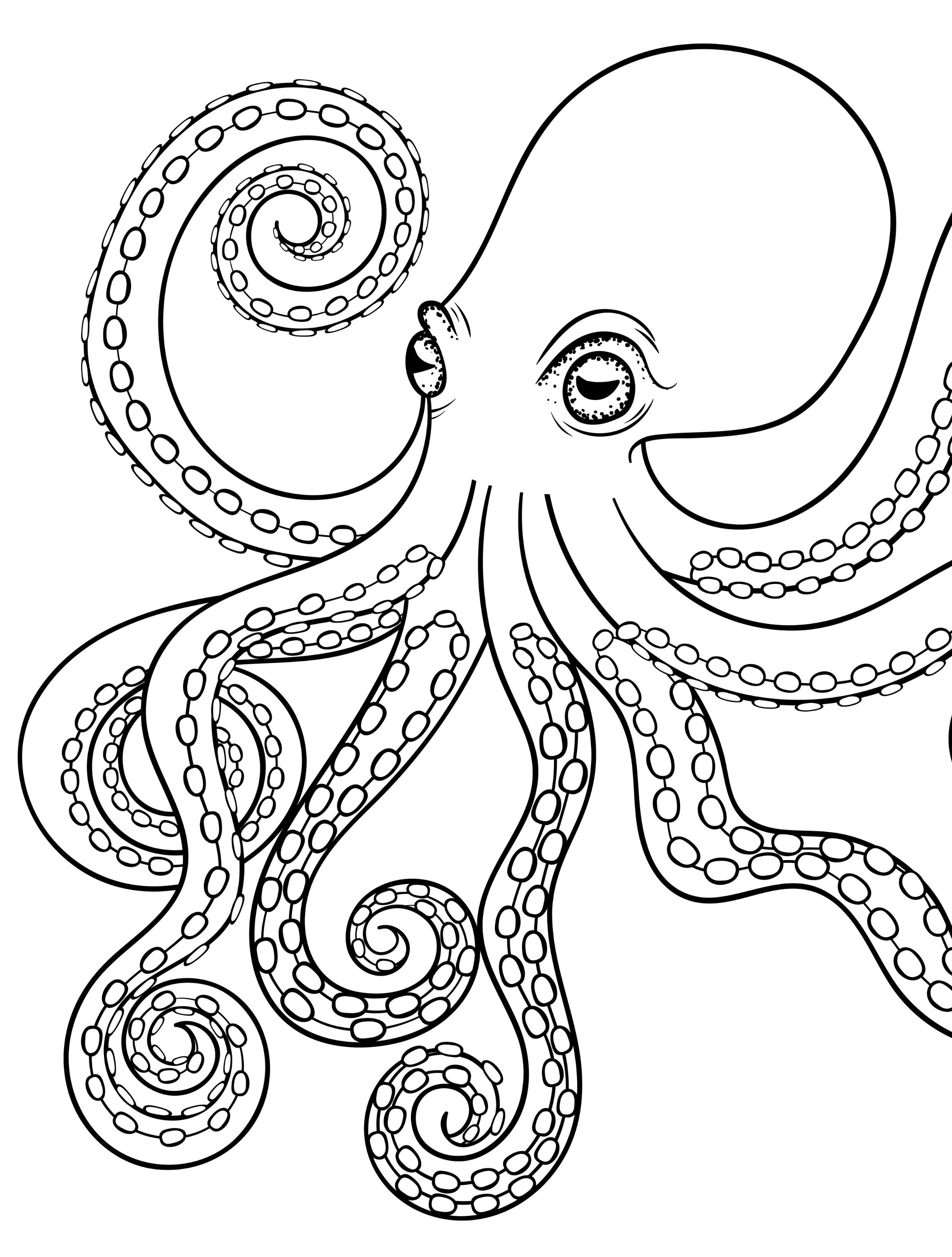 free octopus coloring pages coloring pages of octopus for preschoolers coloring home coloring octopus pages free