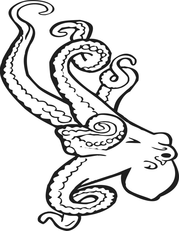 free octopus coloring pages free printable octopus coloring pages for kids free coloring octopus pages