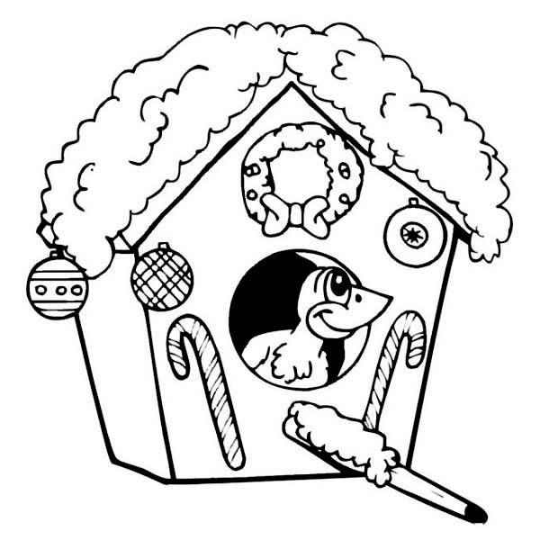 free printable birdhouse coloring pages bird cage coloring page at getcoloringscom free birdhouse free printable coloring pages