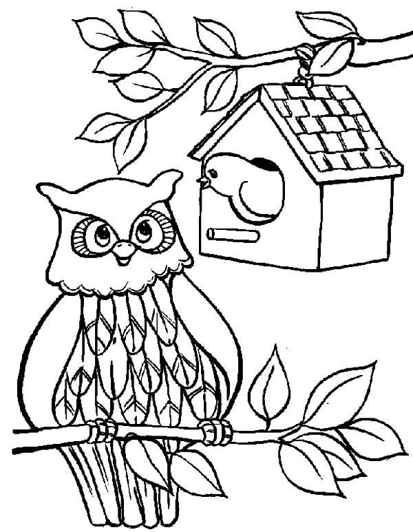 free printable birdhouse coloring pages birdhouse coloring pages at getcoloringscom free birdhouse printable coloring free pages