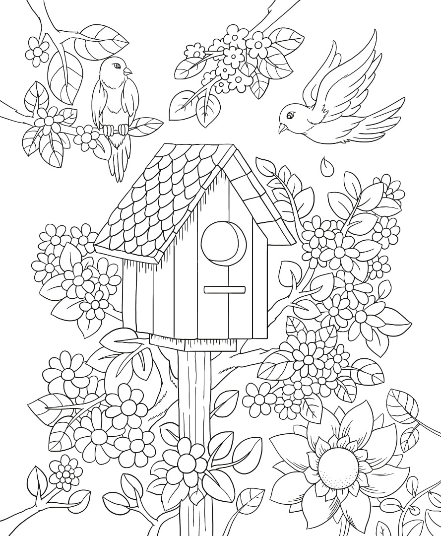 free printable birdhouse coloring pages birdhouse coloring pages at getcoloringscom free coloring pages printable birdhouse free