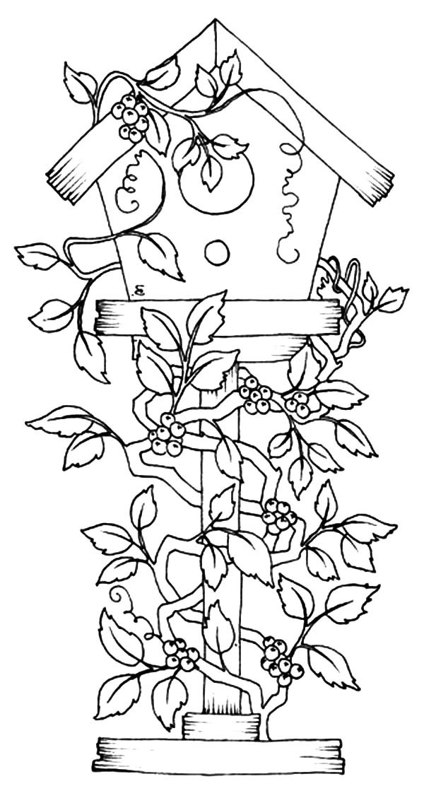 free printable birdhouse coloring pages birdhouse coloring pages with images coloring pages pages free birdhouse printable coloring