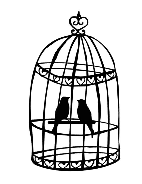 free printable birdhouse coloring pages parrot cute bird cage coloring pages parrot cute bird pages coloring birdhouse printable free