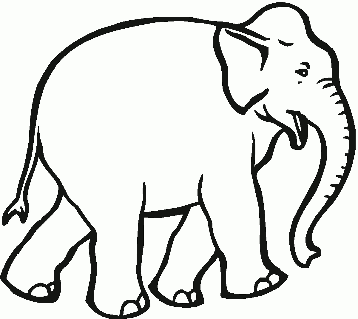 free printable elephant pictures elephant drawing pages at getdrawings free download elephant printable free pictures