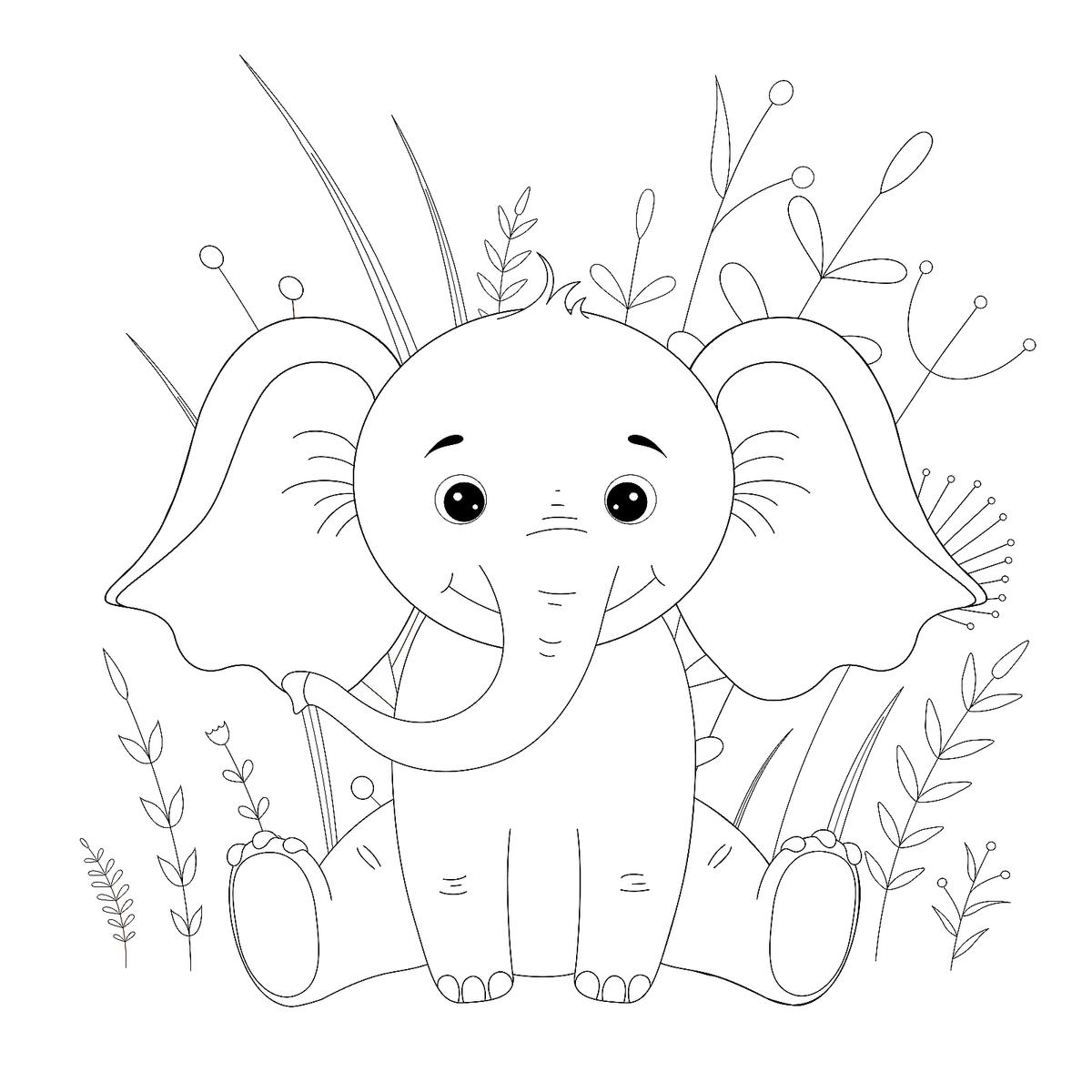 free printable elephant pictures free printable elephant coloring pages for kids printable elephant free pictures 1 1