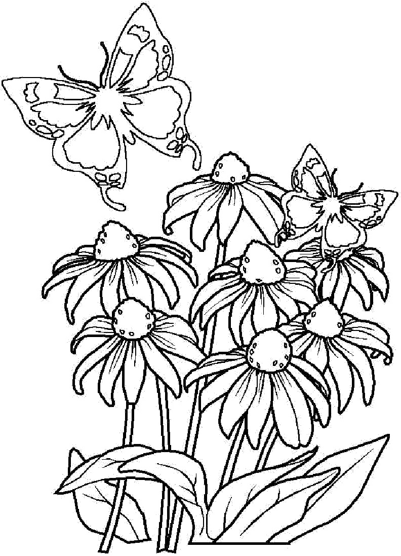 free printable flower coloring pages bouquet of flowers coloring pages for childrens printable free flower coloring printable pages