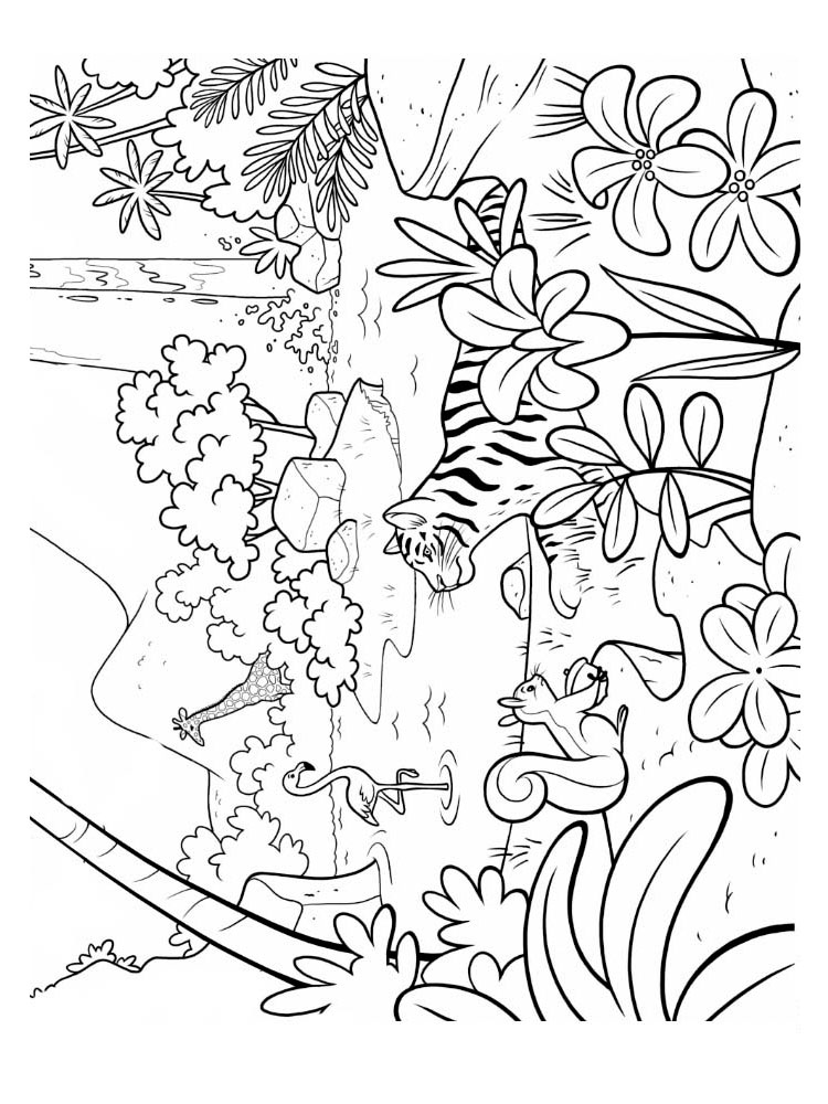 free printable jungle coloring pages jungle animals drawing at getdrawings free download printable pages free jungle coloring