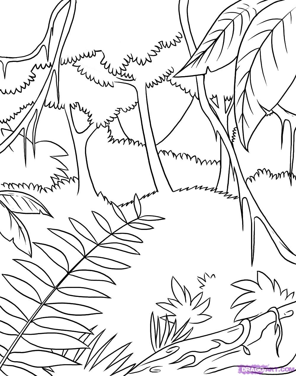 free printable jungle coloring pages jungle coloring pages to download and print for free coloring printable free jungle pages