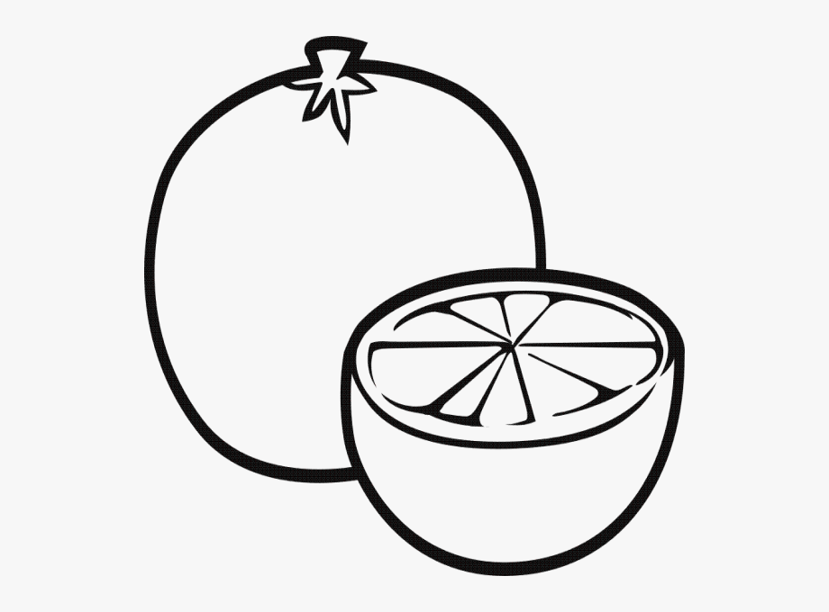 fruits drawings color coloring book fruit drawing child clip art fruits drawings color fruits