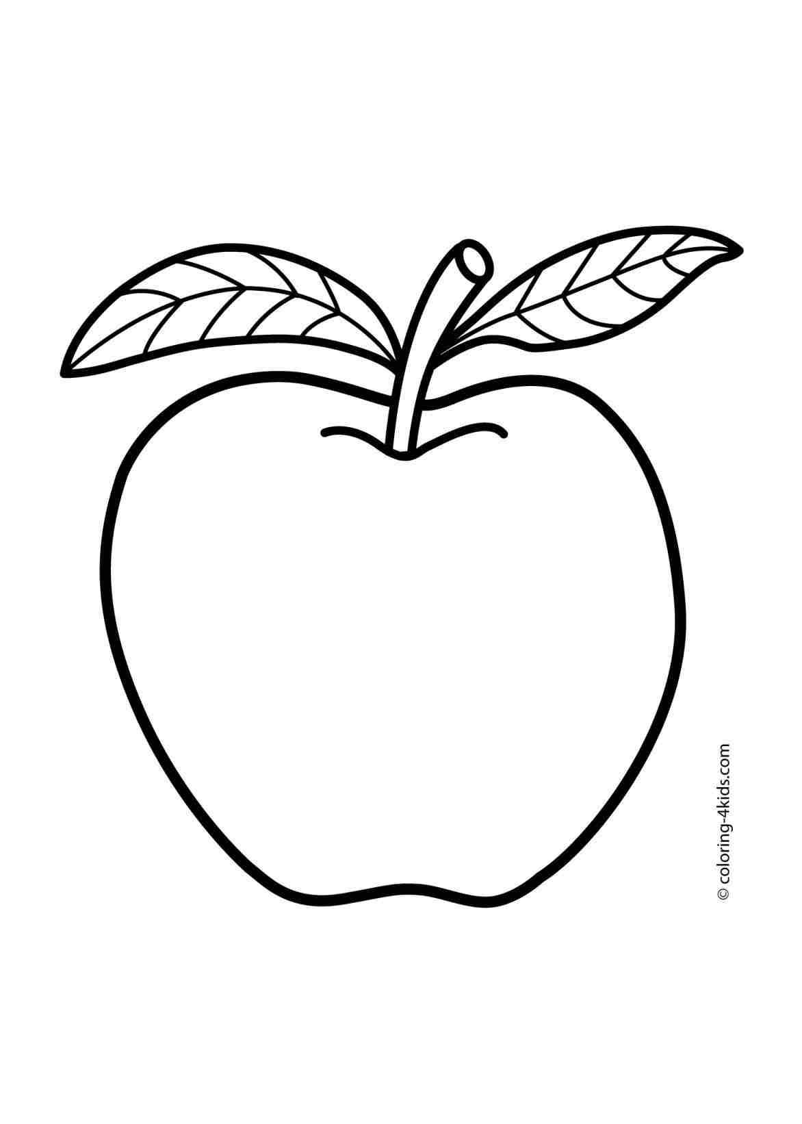 fruits drawings color orange fruit drawing free download on clipartmag drawings fruits color