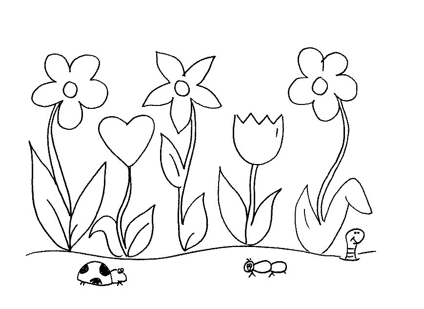 garden coloring garden coloring pages for preschool at getdrawings free garden coloring