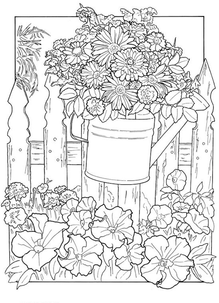 garden pictures to colour dover whimsical gardens 2 garden coloring pages dover colour to garden pictures