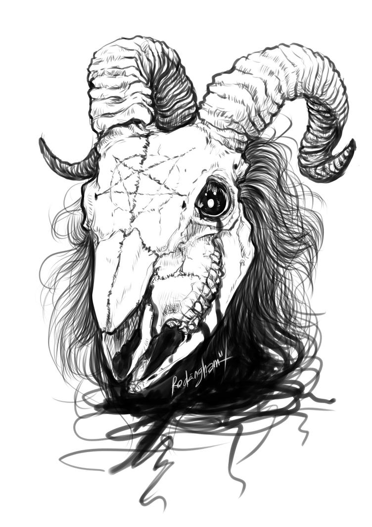 goat head drawing goat face drawing at getdrawings free download goat drawing head