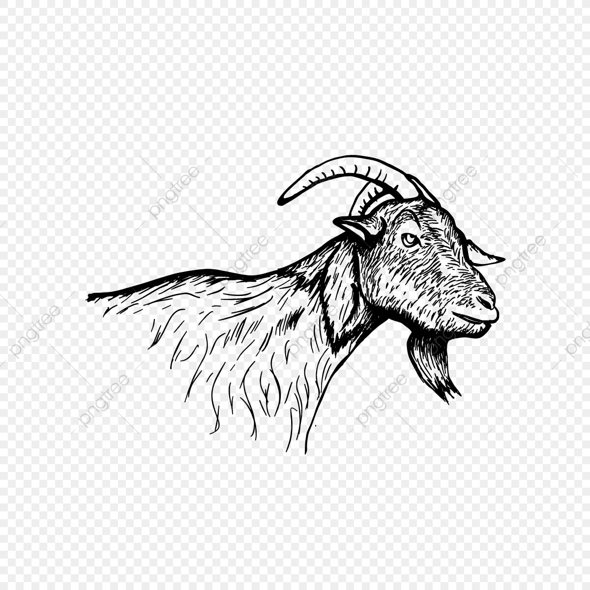 goat head drawing hand sketch of goat head stock illustration in 2020 goat head drawing