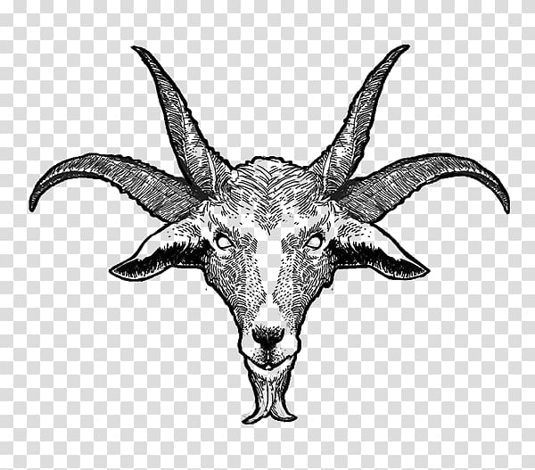 goat head drawing moose head line drawing google search goat art animal drawing goat head