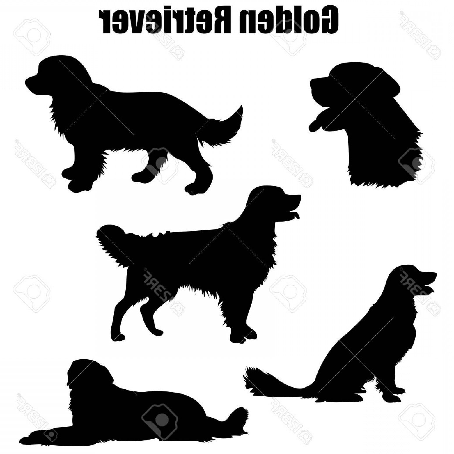 golden retriever sitting silhouette the best free breed silhouette images download from 488 golden sitting silhouette retriever