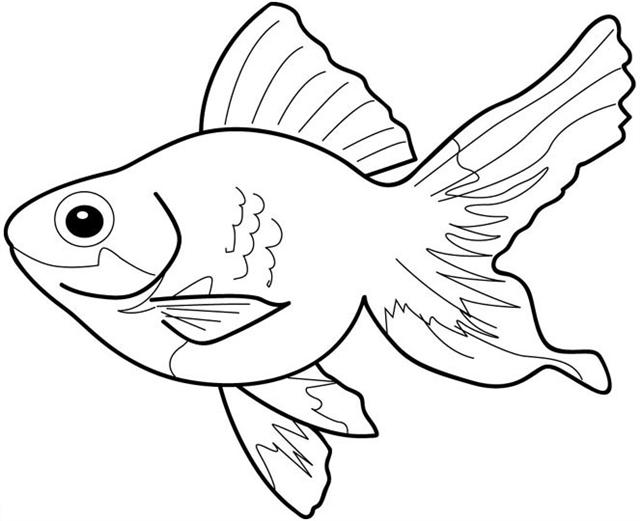 goldfish coloring fish color pages to print activity shelter coloring goldfish
