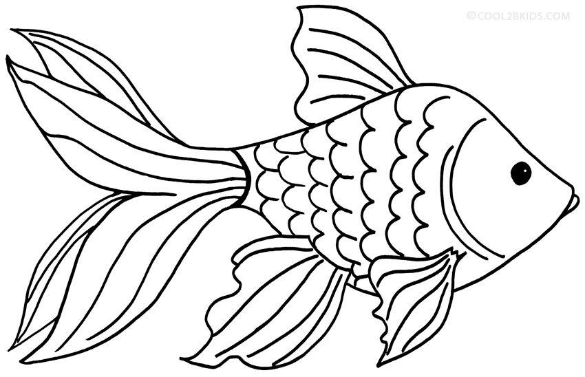goldfish coloring printable goldfish coloring pages for kids goldfish coloring