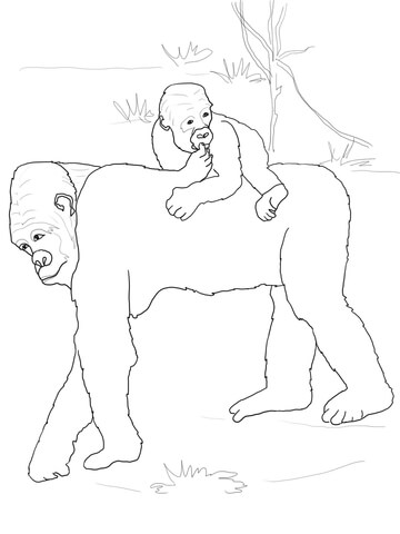 gorilla face coloring pages baby gorilla on mother39s back coloring page coloring pages face gorilla