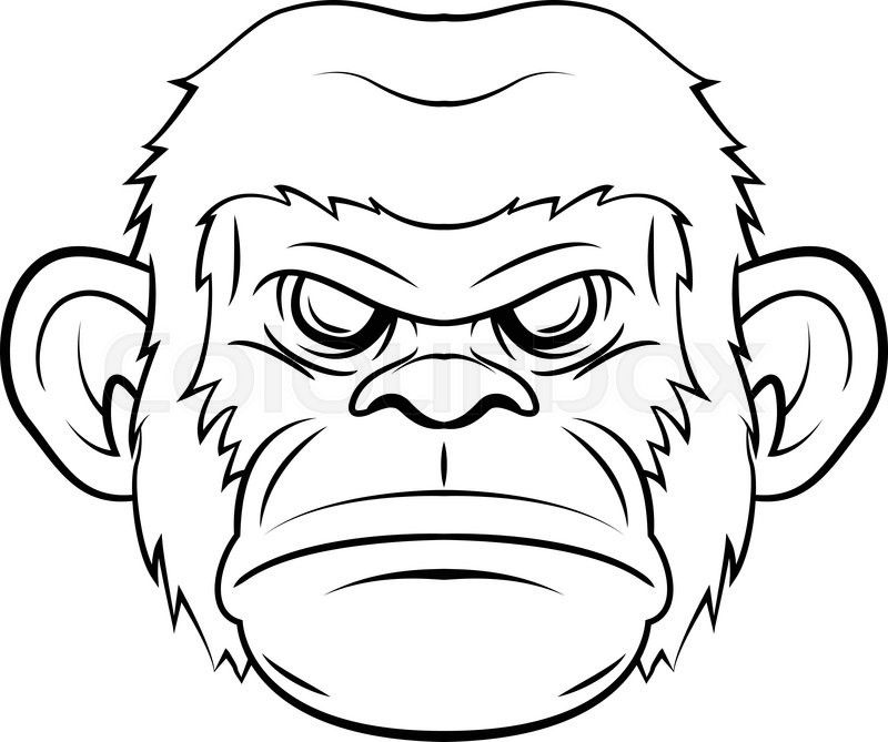 gorilla face coloring pages gorilla coloring pages gorilla pages face coloring