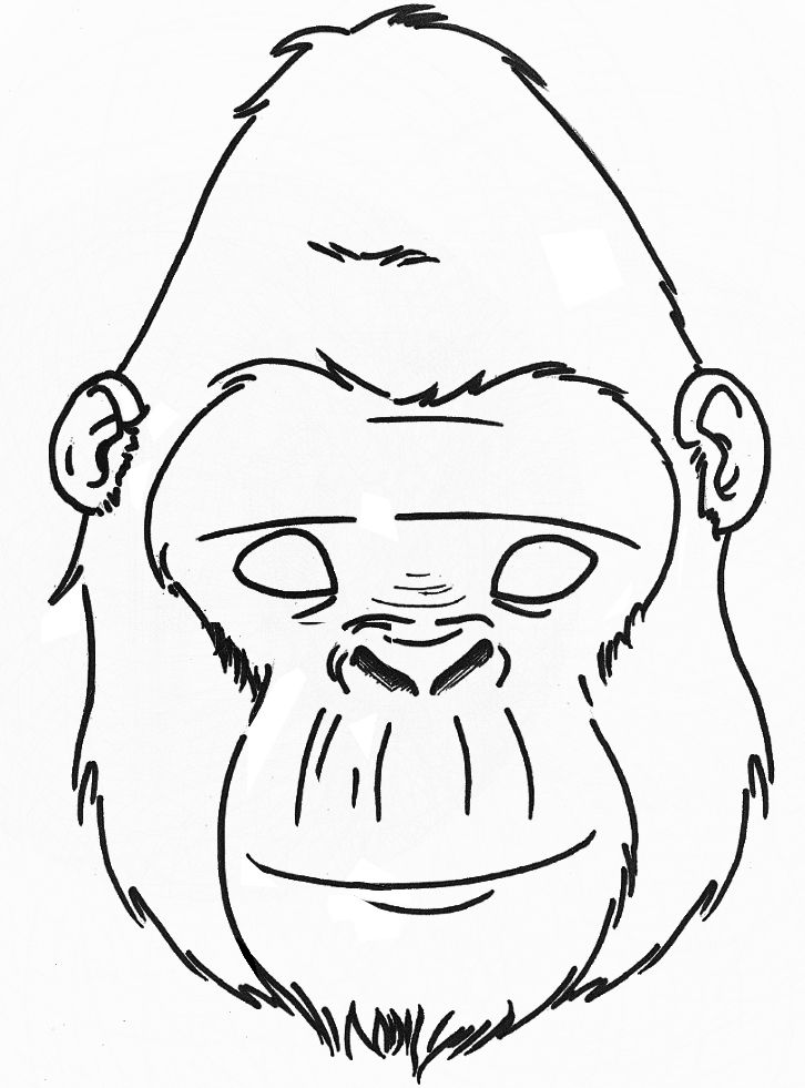 gorilla face coloring pages gorilla face drawing at getdrawings free download pages face coloring gorilla