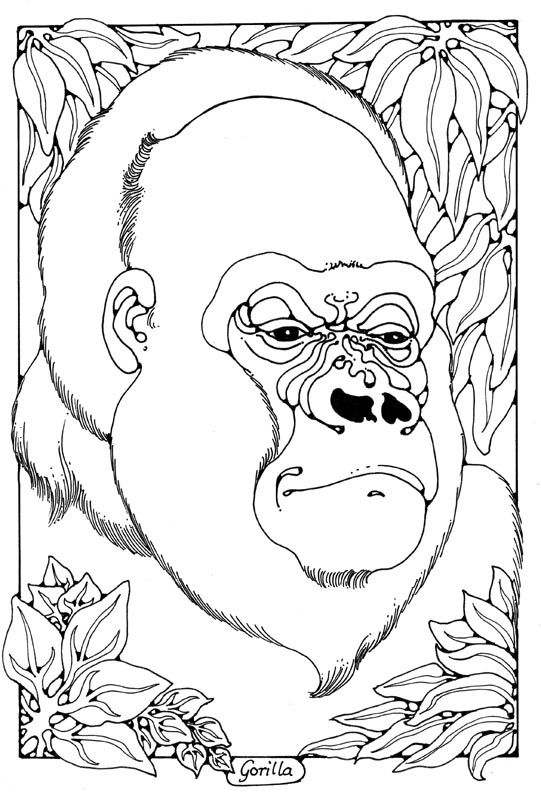 gorilla pictures to print gorilla coloring page a free animal coloring printable gorilla print pictures to