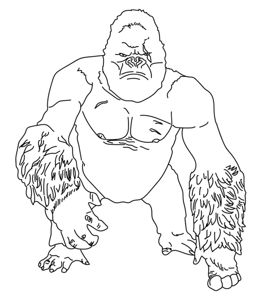 gorilla pictures to print gorilla coloring pages books 100 free and printable gorilla to pictures print