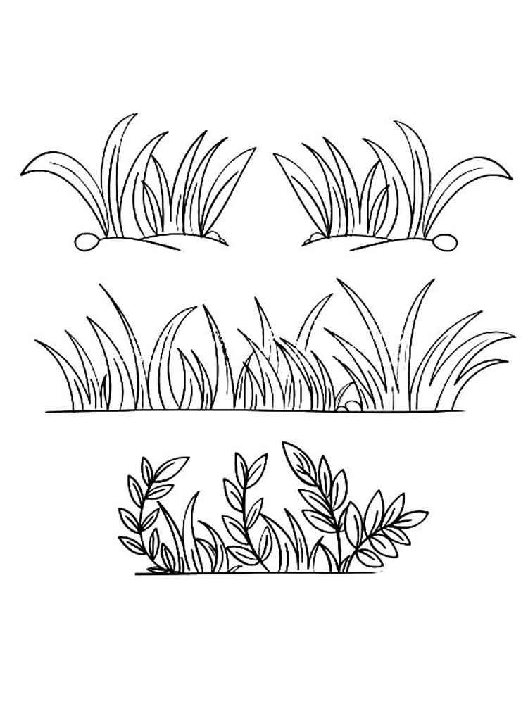 grass coloring images download grass coloring for free designlooter 2020 coloring grass images