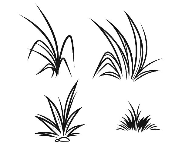grass coloring images grass coloring download grass coloring for free 2019 coloring images grass 1 1