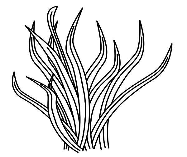 grass coloring images grass coloring pages download and print grass coloring pages images coloring grass