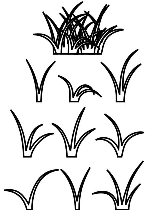 grass coloring images grass coloring pages download and print grass coloring pages images grass coloring
