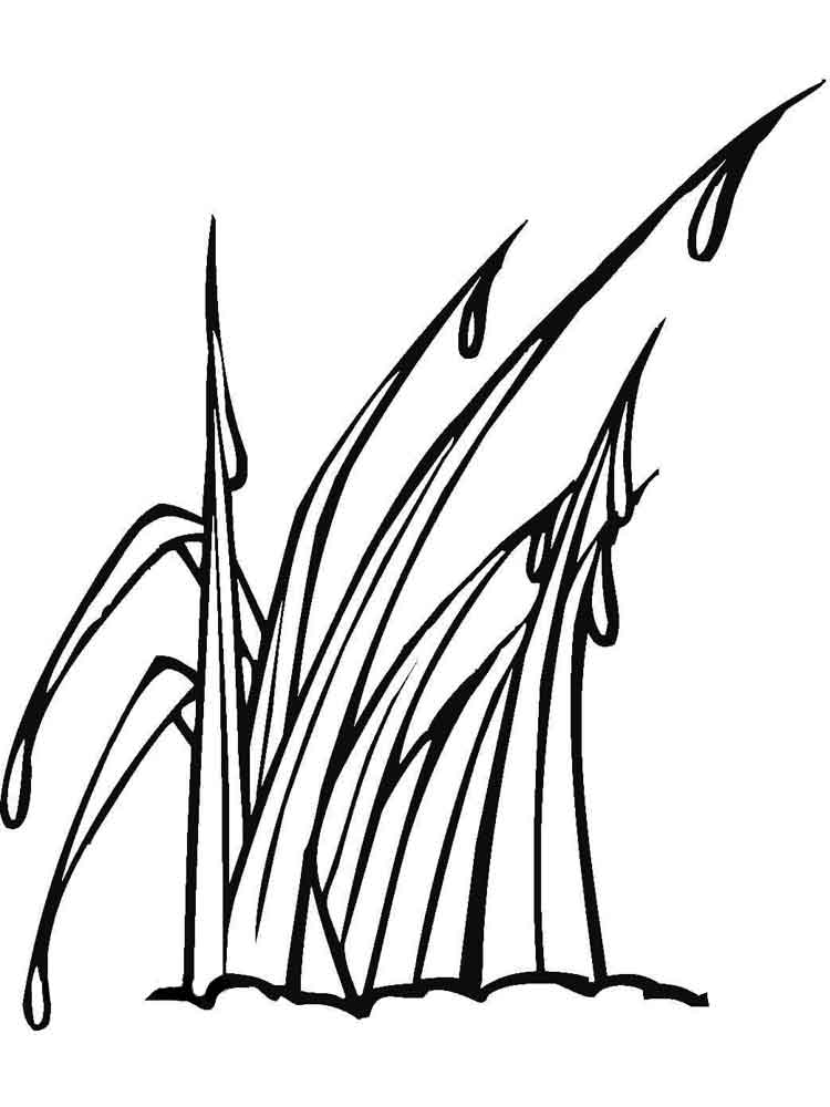 grass coloring images grass coloring pages for kids color luna grass images coloring