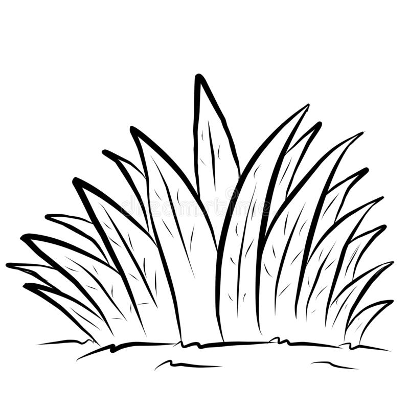 grass coloring images grass line drawing at getdrawings free download grass coloring images
