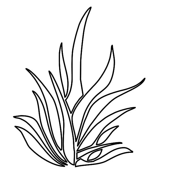 grass coloring images grass with pencil drawing at getdrawings free download coloring grass images